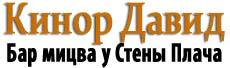 лого кинор давид