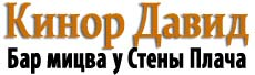 кинор давид Logo